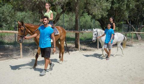 jahanje-skouras-kamp-bazen-fudbal-grcka-stoni-tenis-odbojka-kosarka-plaza-tekvondo-bicikl (2)